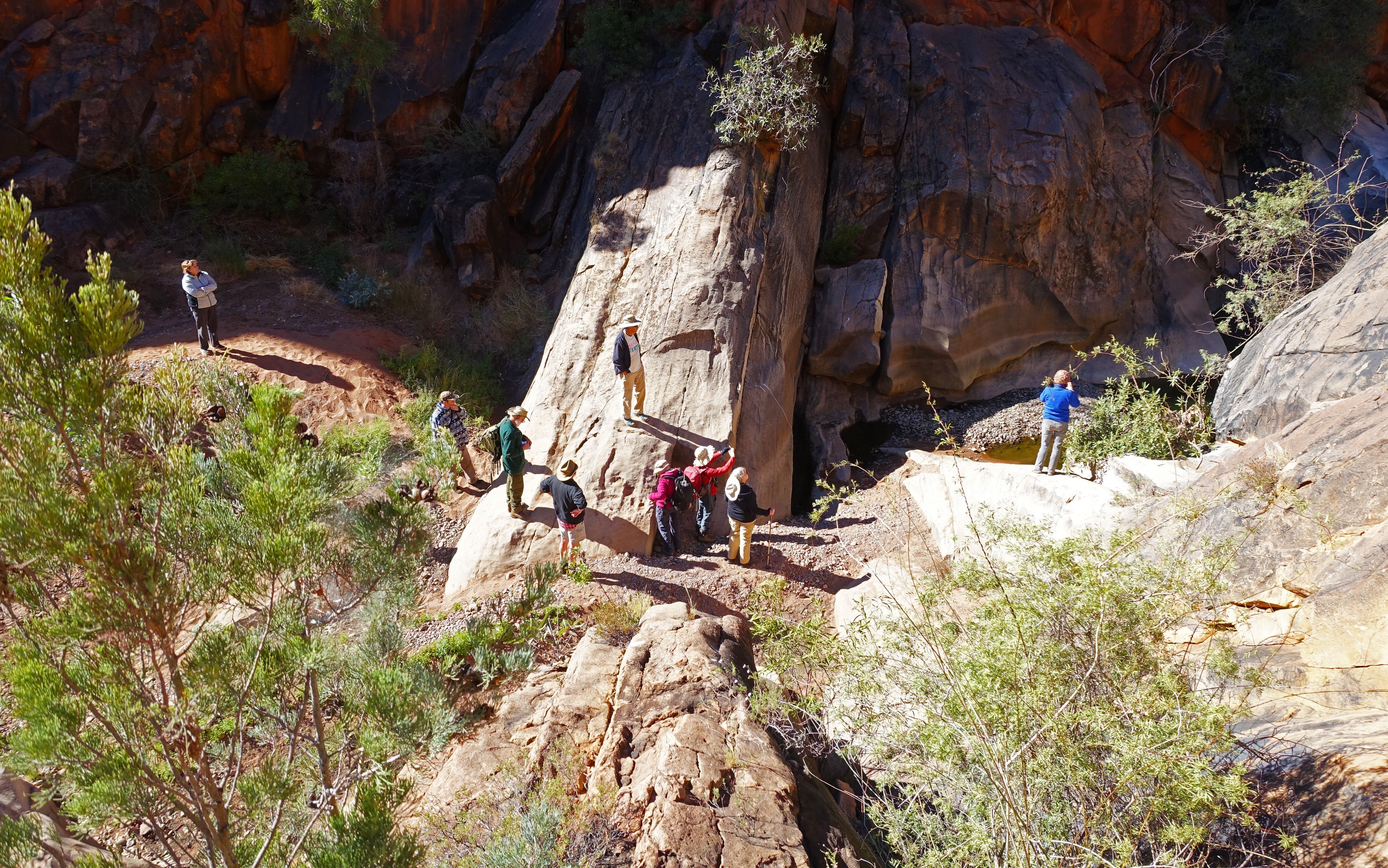 Alice Springs Field Naturalists at Roma Gorge