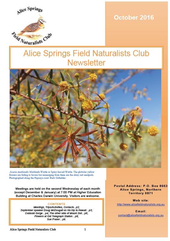 Alice springs field naturalists club newsletters october mightylinksfo