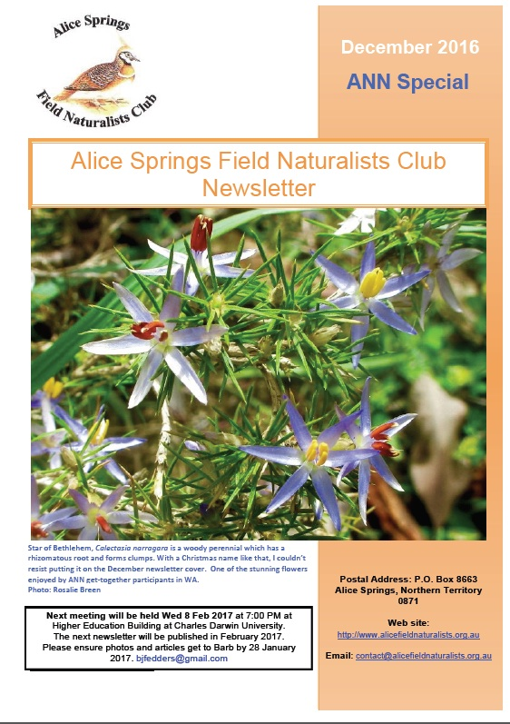 Alice springs field naturalists club newsletters december special edition mightylinksfo